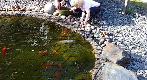 Super strong CHILD SAFE NET Pond Safety Net Kits and Child Safety Pond Covers